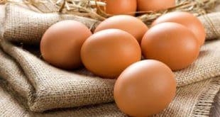 mcdonalds eggs