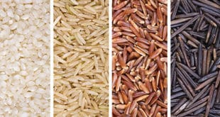 arroz - rice