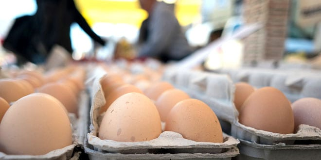 Cheap eggs - Huevos baratos