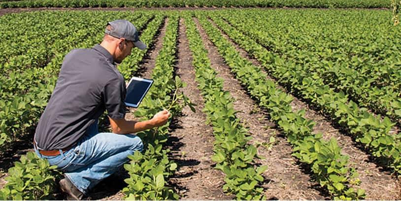agriculture industry-industria de la agricultura