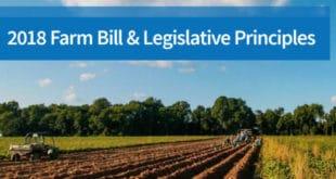 Principios Proyecto de Ley Agrícola - farm bill