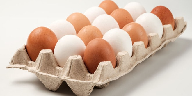 eggs, huevos