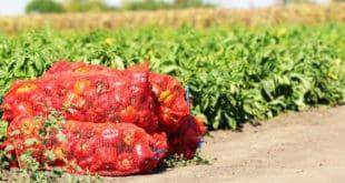 PACA produce sanctions - sanciones agrícolas