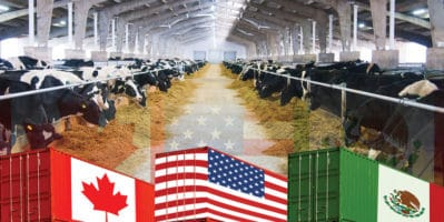 Does the USMCA benefit the US dairy industry?