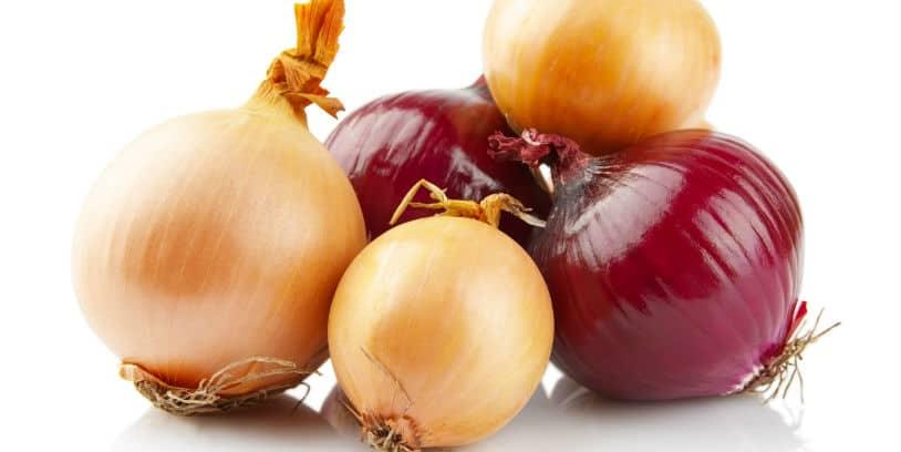 onions recall - retiran cebollas salmonella