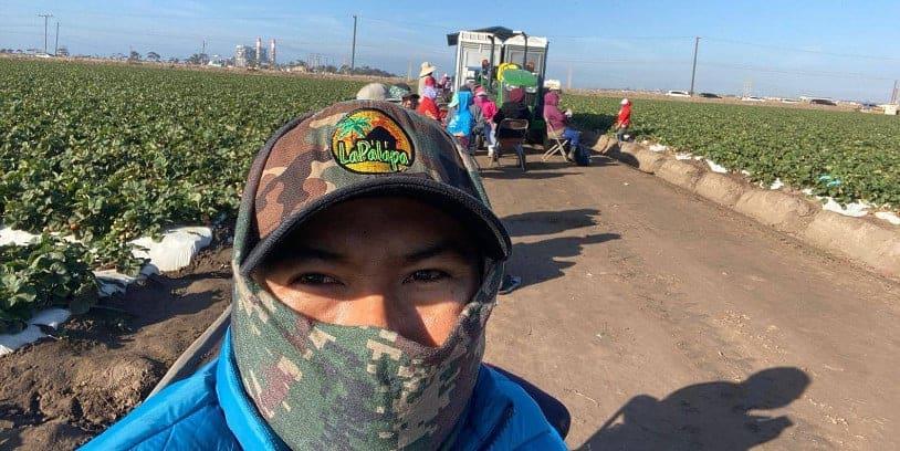 agricultural workers - trabajadores agrícolas