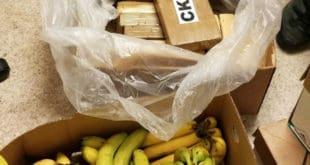 cocaine banana boxes - cocaína cajas de banano
