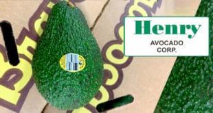 Henry Avocado Recall, retiro de aguacates