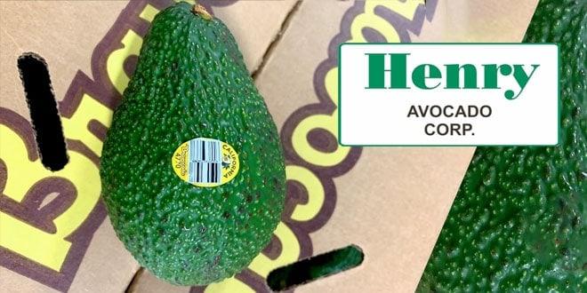 Henry Avocado Recall