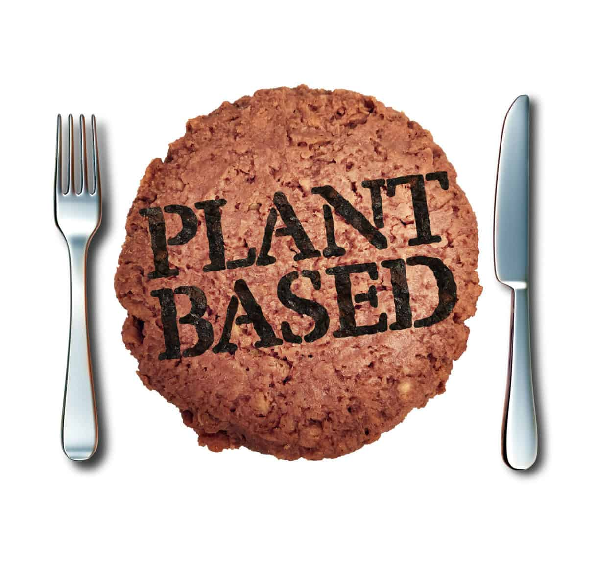 Plant Based Meat Alternative
